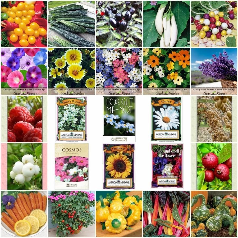 Combo 20 gói hạt giống hoa, hạt giống rau