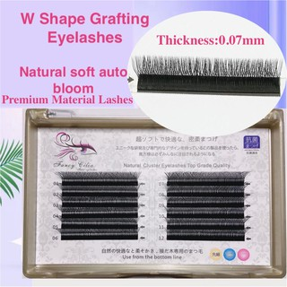 W shape Eyelashes Curve C,D,DD 0.07mm tulip Mink Individual eyelash extension 3D Premade Volume Fans Double tips W Style Lashes