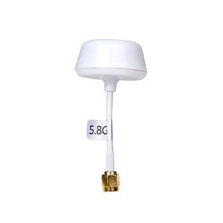 [HCM] – Antenna VTX 5.8G Circular-Polarized Omni Cloud Spirit đầu RP-SMA