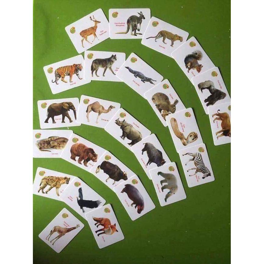Bộ thẻ học thông minh cho bé 16 chủ đề (416 thẻ)