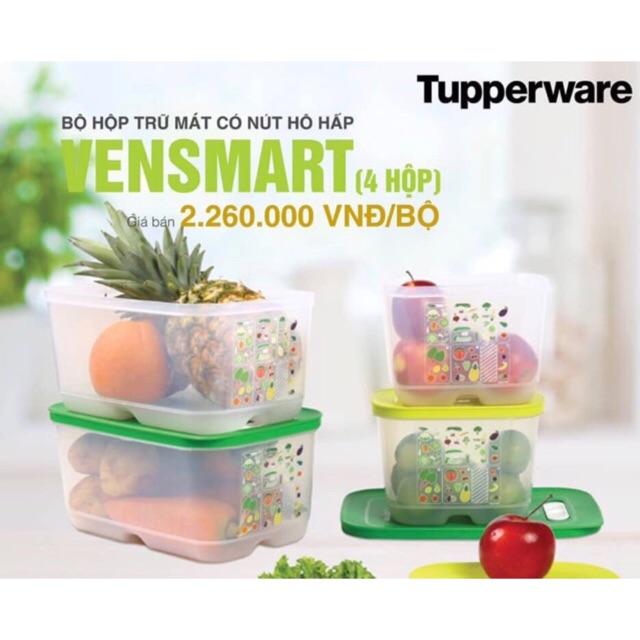 Bộ hộp trữ mát Tupperware Vensmart 4 hộp