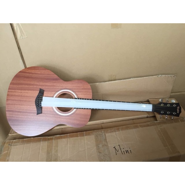Guitar Taylor Gsi