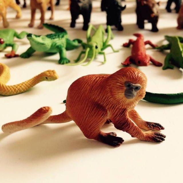 Mô hình động vật 36 thú hoang