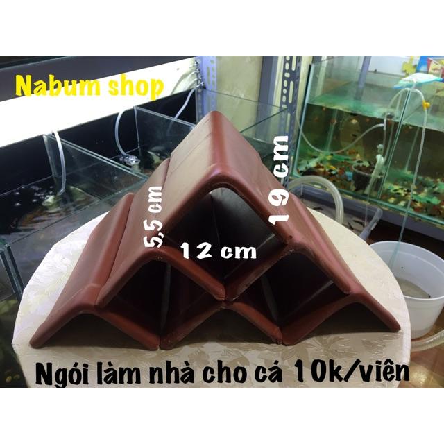 Ngói làm nhà cho cá