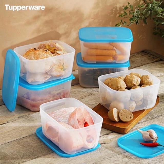 Tupperware Set 6 hộp trữ đông 650ml rainbow mix