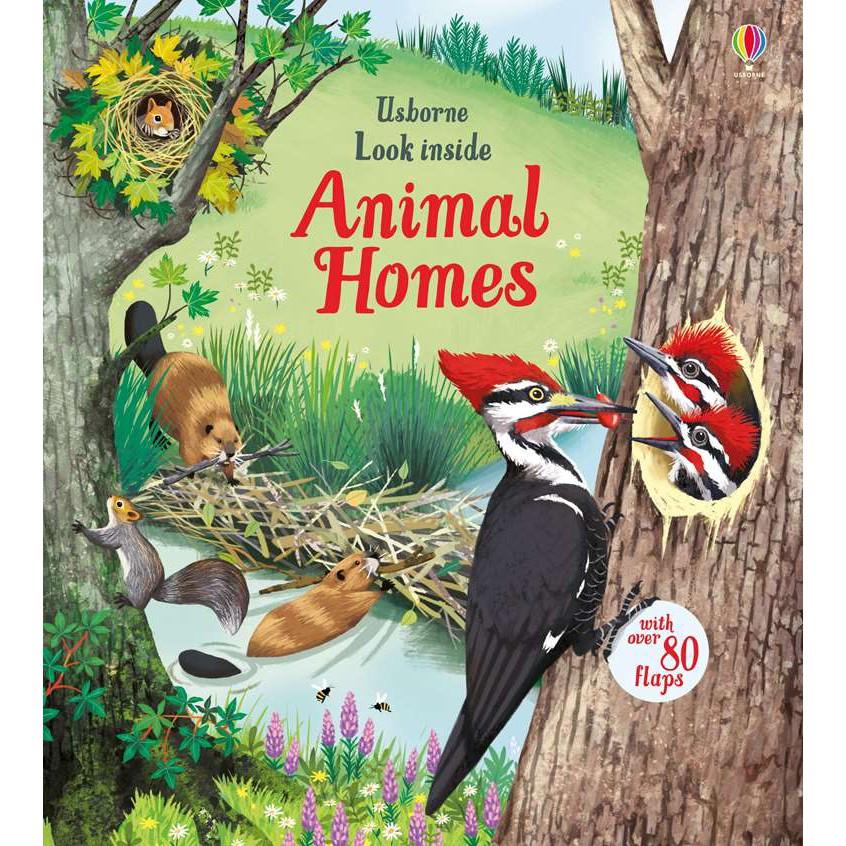 Sách lật mở khám phá Look Inside Animal Homes