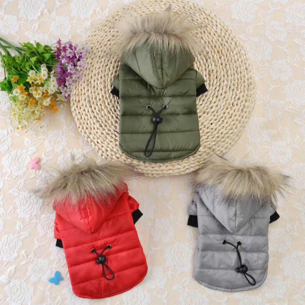 Cotton Padded Dog Hooded Fur Collar Cute Pet Warm Small Winter