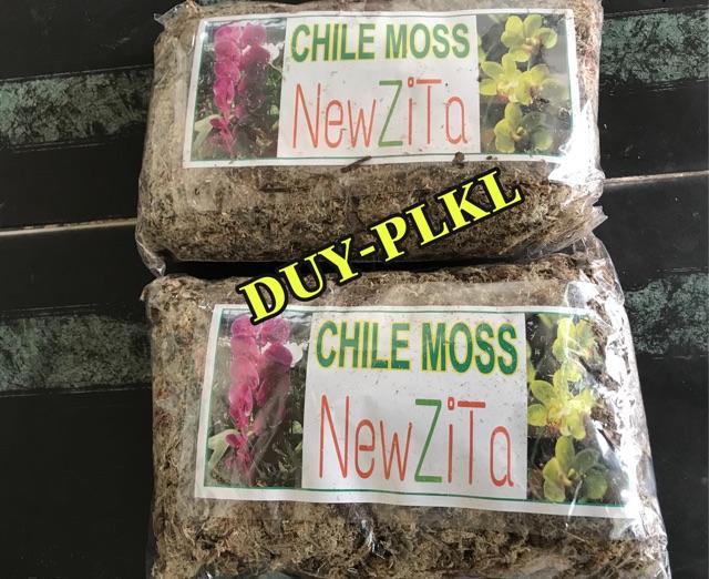 Dớn trắng chile moss - Dớn mềm : túi - ( 100gram) . Giá thể trồng lan!!