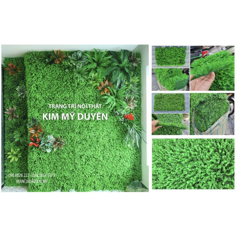 thảm cỏ nhân tạo vĩ cỏ tai chuột