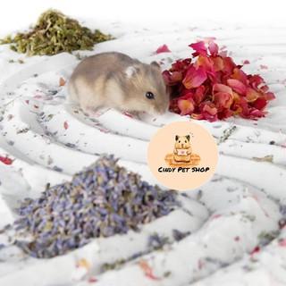 Cát tắm Lizzy 1kg full mùi hương cho Hamster thumbnail