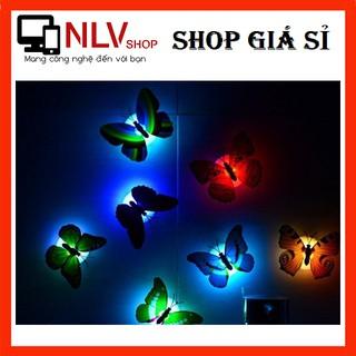 🎁Deal Hot🎁 Đèn Led Bướm Phát Quang Trang Trí Dán Tường