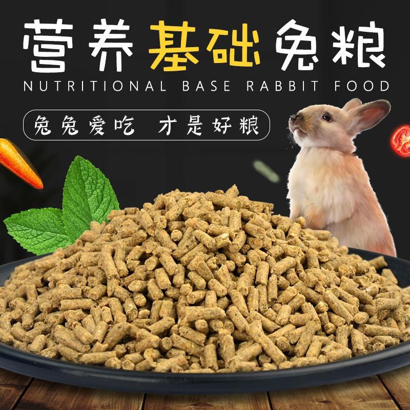 กระต่ายอาหารกระต่ายน้อยเข้าไปในกระต่ายสัตว์เลี้ยงกระต่ายโภชนาการพื้นฐานอาหารดัตช