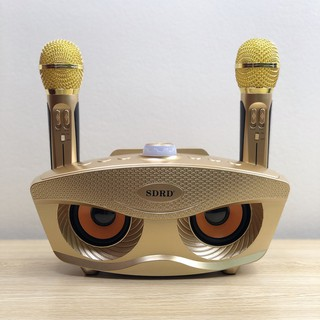 [Mã ELMSBC giảm 8% đơn 300K] Loa Karaoke không dây cao cấp, Loa kèm 2 mic hát bluetooth công suất 40W Sd 306 plus KLH