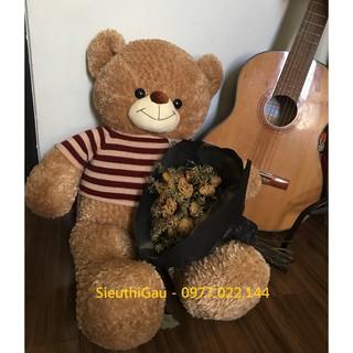 Gấu Teddy lông xù áo len khổ 1m – Gấu bông Teddy siêu hot
