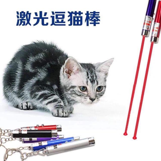 Lazer đồ chơi cho thú cưng