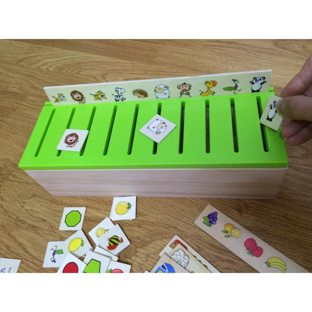 Hộp phân loại nhiều chủ đề  Đồ chơi thông minh - Đồ chơi an toàn