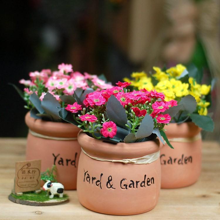 Chậu hoa nhỏ để bàn - chậu gốm hoa cúc - 3019895 , 400475471 , 322_400475471 , 105000 , Chau-hoa-nho-de-ban-chau-gom-hoa-cuc-322_400475471 , shopee.vn , Chậu hoa nhỏ để bàn - chậu gốm hoa cúc