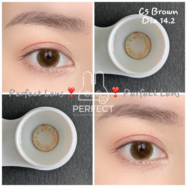 Link 1 (Giá 1 Chiếc) 14.2 (0.00 -> 8.00) Lens C5 Brown – Kính Áp Tròng