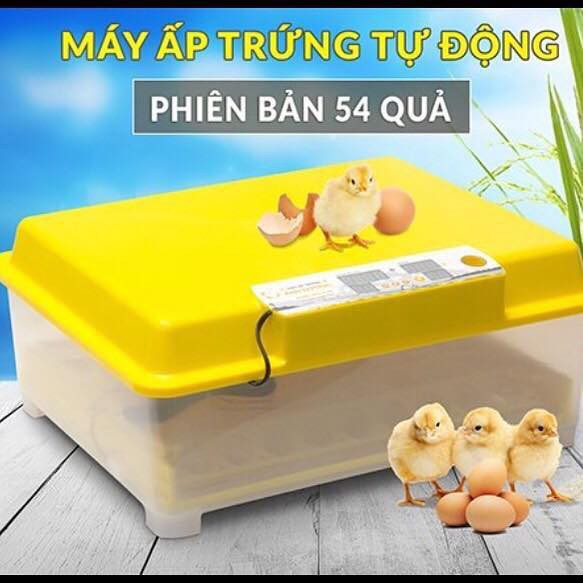 Máy ấp trứng Ánh Dương A100 - Ấp Tối Đa 54 Trứng - Tự Động Hoàn Toàn - Lắp Sẵn