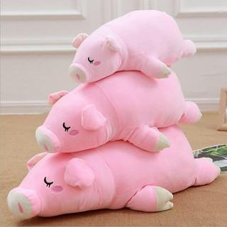 Lợn bông hồng đáng yêu