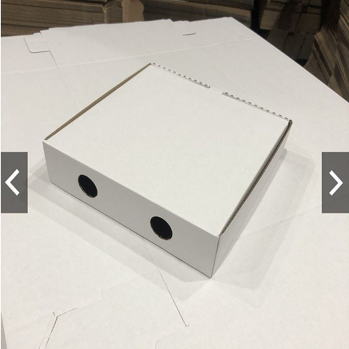 Combo 10 Hộp đựng bánh Pizza Size: 16cm