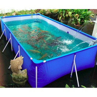 Bể Bơi Lắp Ghép 2.6mx1.6m cao 65cm