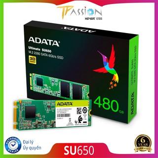Ổ Cứng SSD M.2 2280 ADATA Ultimate SU650 - Bảo Hành 6 Năm 1 Đổi 1 Chính hãng, SATA 6Gb s, 3D NAND Flash thumbnail