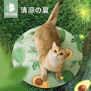 Vật nuôi băng mat mèo mat mat mùa hè làm mát chống cắn chó ngủ thảm mùa hè mèo lót chuồng mát mẻ vật nuôi thumbnail