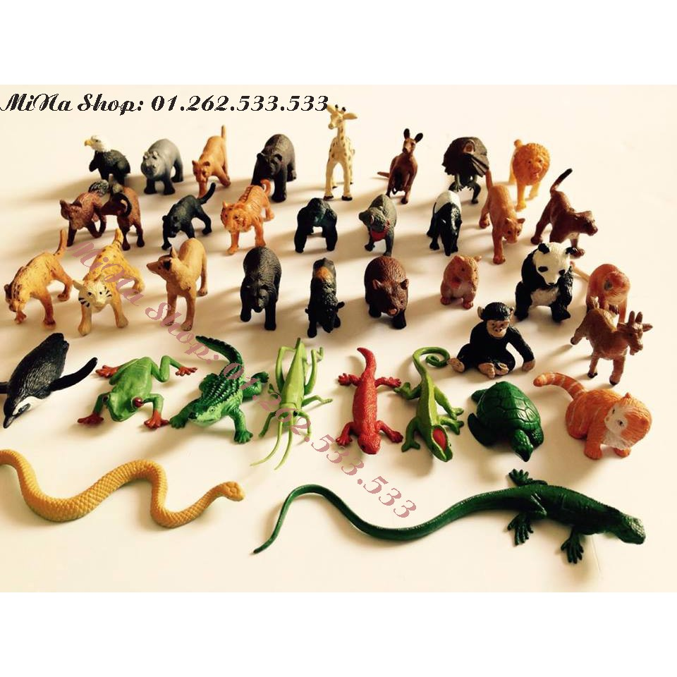 Mô hình động vật Xuất khẩu Safari
