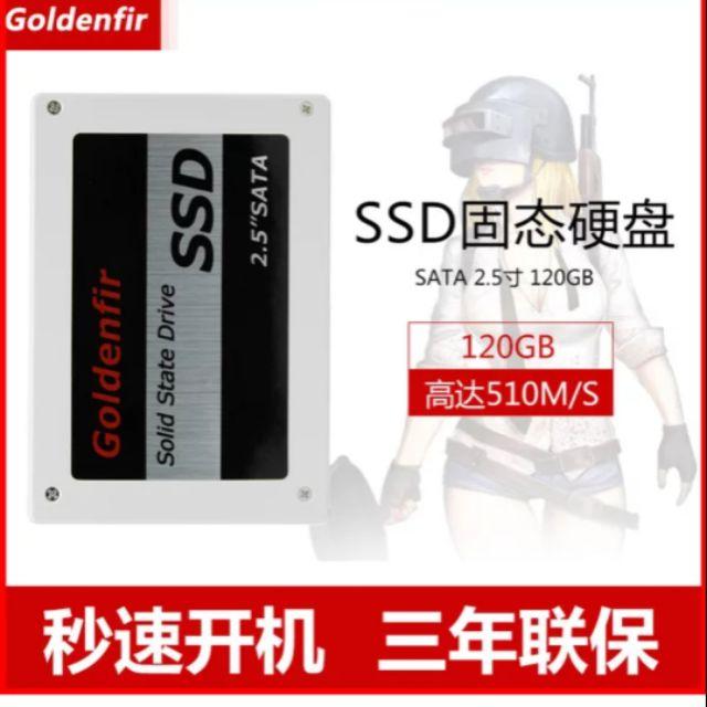 Ssd goldenfir Giá chỉ 420.000₫
