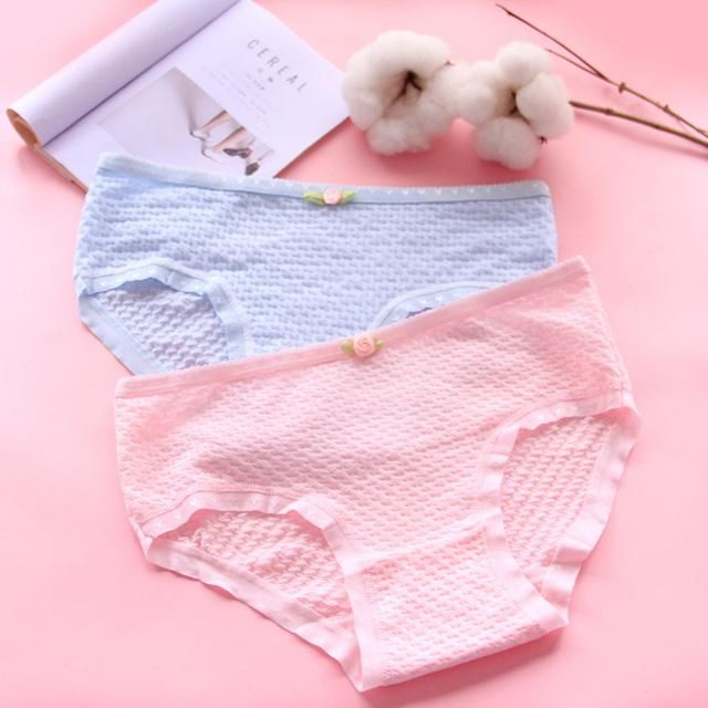 [quần lót siêu rẻ ] 10 quần lót cotton sợi bông, quần su , quần chip đẹp, quần thông hơi, quần đúc, quần điều hòa | WebRaoVat