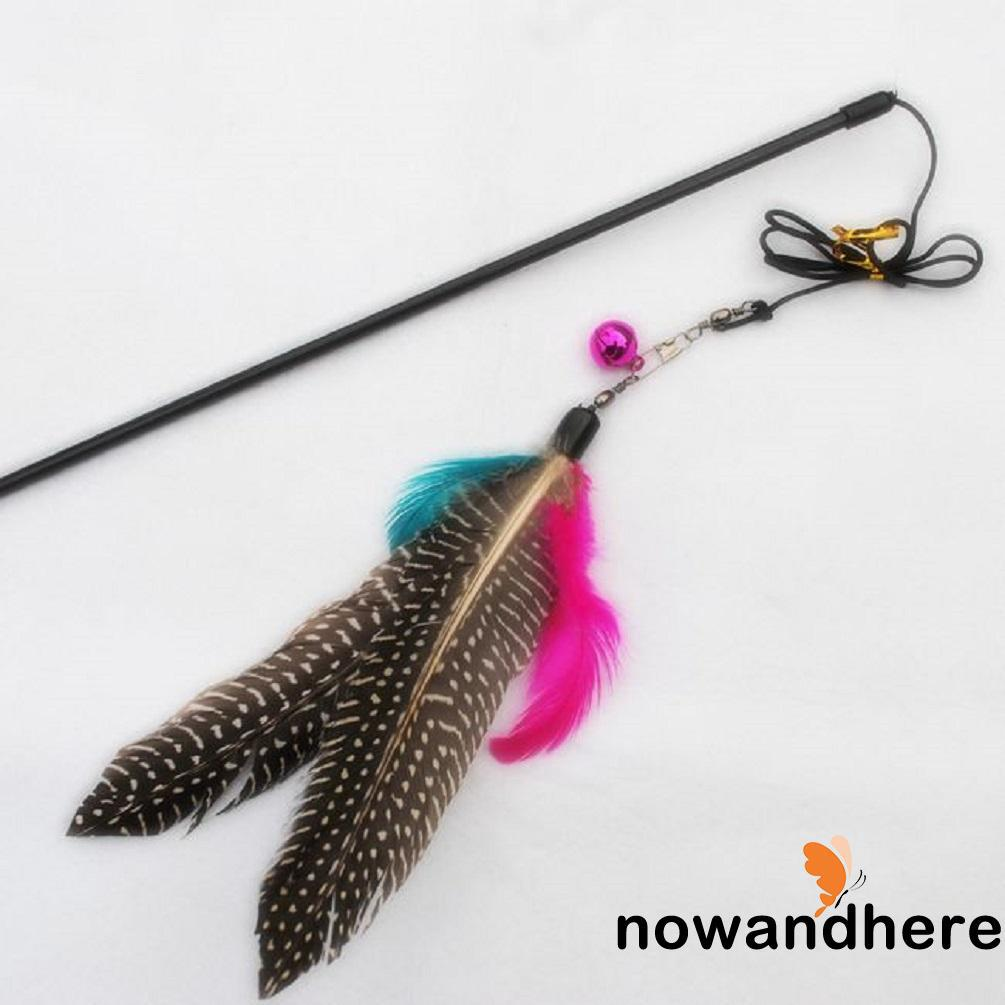 NNN-Hot Cute Pet Cat Toy Design Steel Wire Feather Wand Fashion Plastic Toy