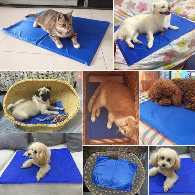 [HẤP DẪN] Đệm cool gel ice pad cho thú cưng BÁN CHẠY