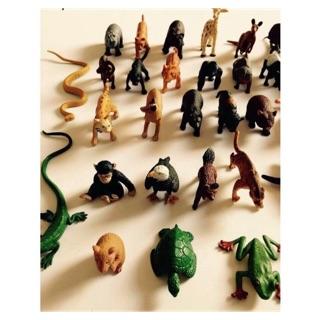 Combo mô hình động vật rừng và sinh vật biển