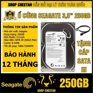 """HDD 3.5"""" Seagate 250GB – Ổ cứng PC chính hãng – Mới 99% – Bảo hành 12 tháng – Tháo từ máy đồng bộ nhập khẩu"""
