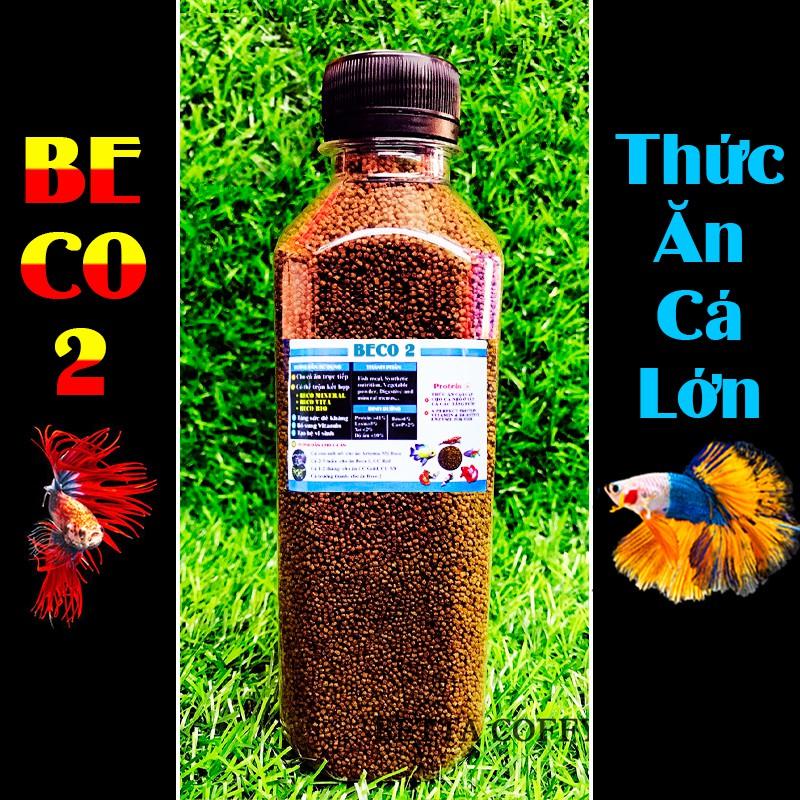 Cám BECO 2 - Thức ăn cho cá lớn 🐠 BETTA COFFY