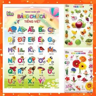 [Nhập mã TOYMAY15 giảm 15K] Bộ tranh treo tường học tập 12 chủ đề song ngữ cho bé – Rẻ Vô Địch