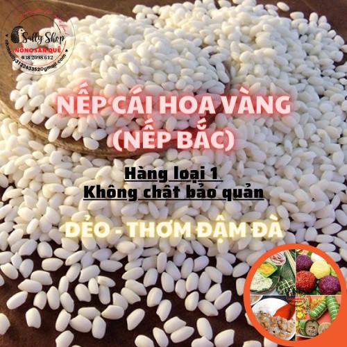 1Kg Gạo Nếp Cái Hoa Vàng - Nếp Bắc Hạt Tròn Dẻo Ngọt Xôi Mềm Thơm Ngon - Nông Sản Quê