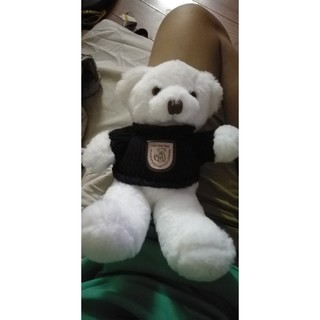 Gấu bông Teddy size 20cm