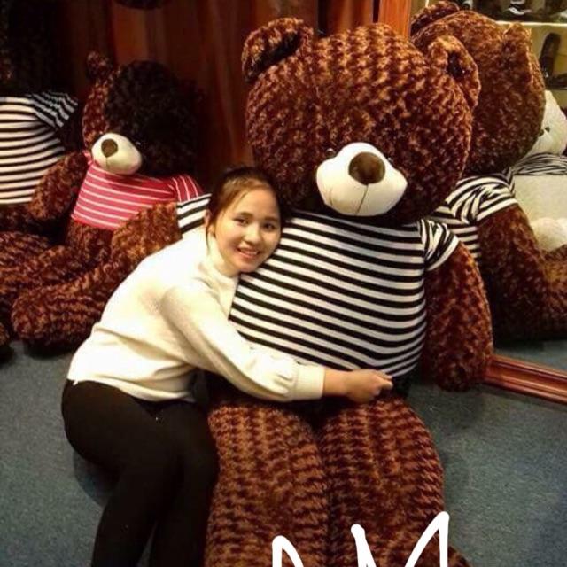 Gấu bông teddy áo khổ vải 2m