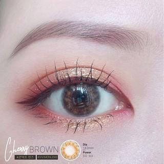 Kính áp tròng Hàn Quốc Mabel Choco – Lens mắt cận nâu đậm (Tặng Kèm Khay)