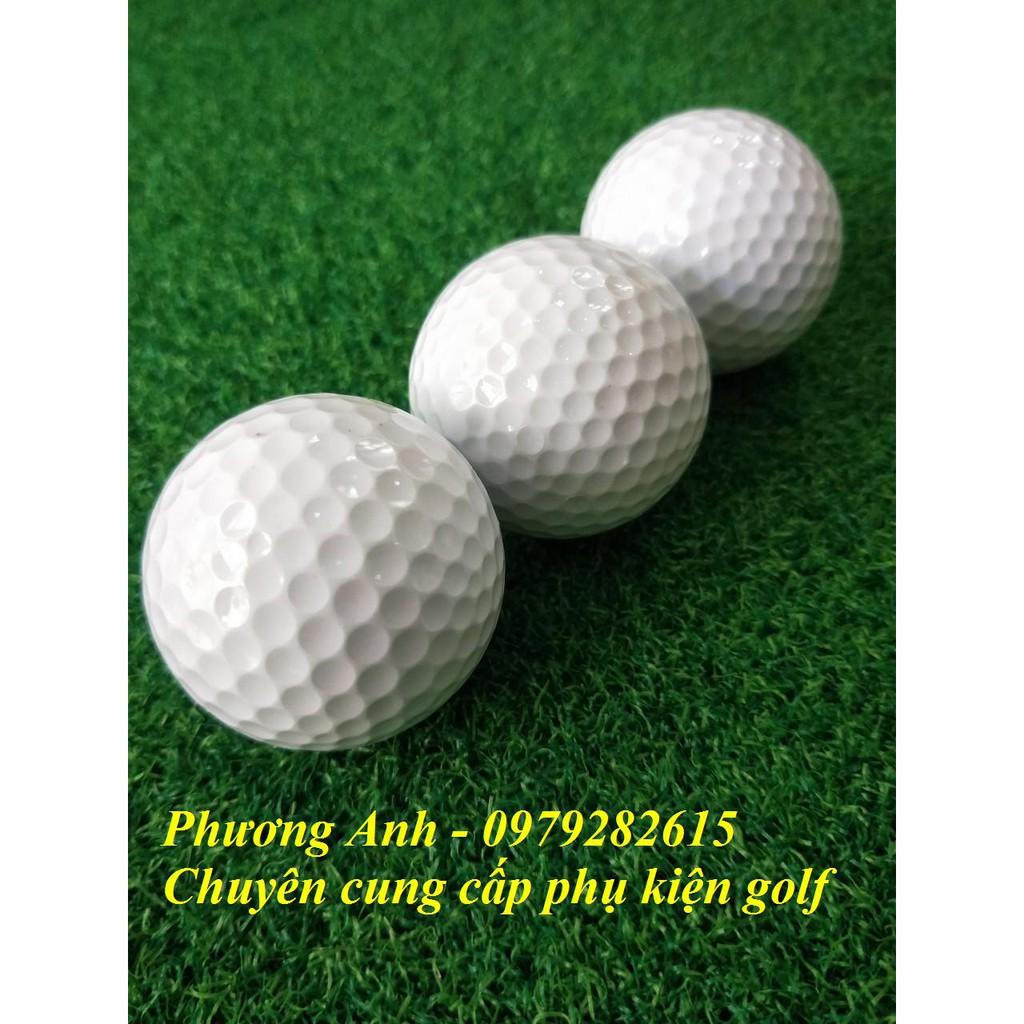 combo 10 bóng tập golf