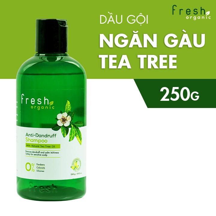Dầu Gội Fresh Organic Tea Tree Oil Ngăn Gàu 250g