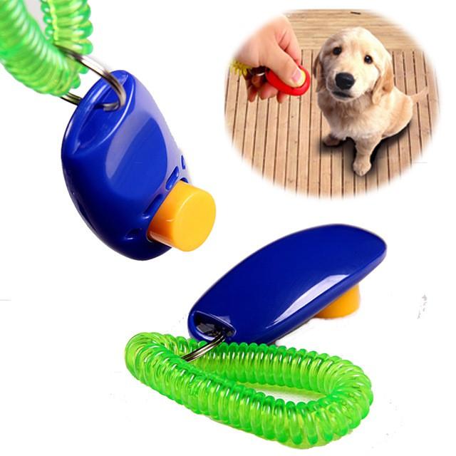 click huấn luyện chó, mèo và các loại thú cưng