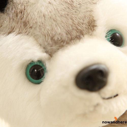 HNW-Keel Toys Soft Toy Cuddly Husky Puppy Dog 18cm Stuffed Animal Teddy 18cm 7