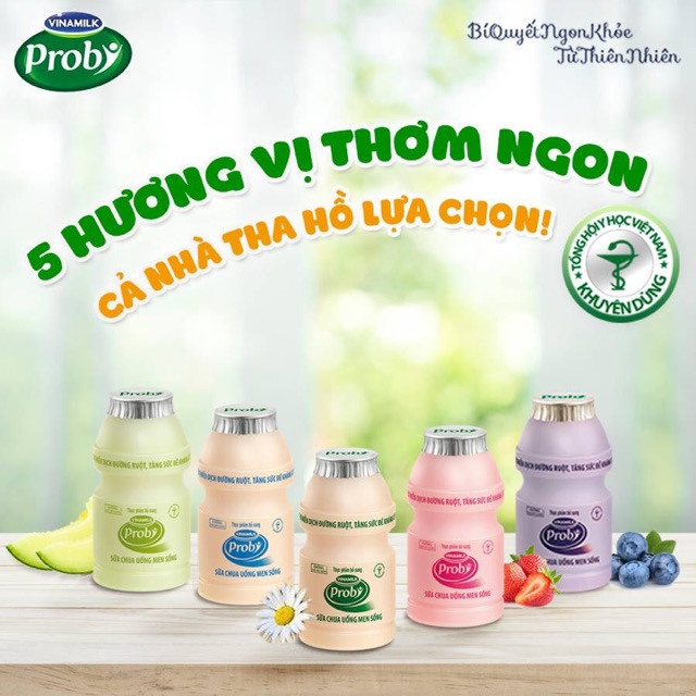 Image result for Sữa chua Vinamilk Probi lốc 4x100g