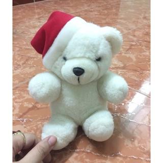 Gấu trắng mũ noel