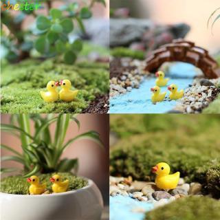 Set 5 món đồ trang trí cây bonsai hình chú vịt con mini màu vàng xinh xắn