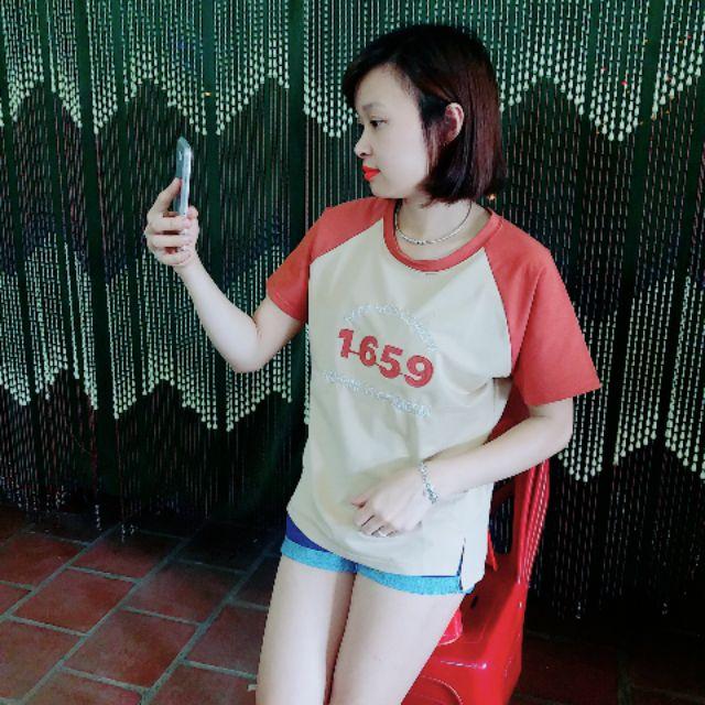 Combo 5 áo Phông pha tay