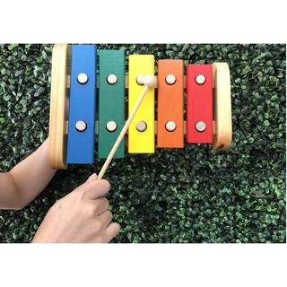 Đồ Chơi Đàn Gõ Xylophone 8 Thanh Giúp Bé Phát Triển Năng Khiếu Âm Nhạc